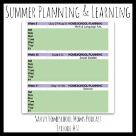 Summer Planning and Learning (Ep 31, 5/20/13)