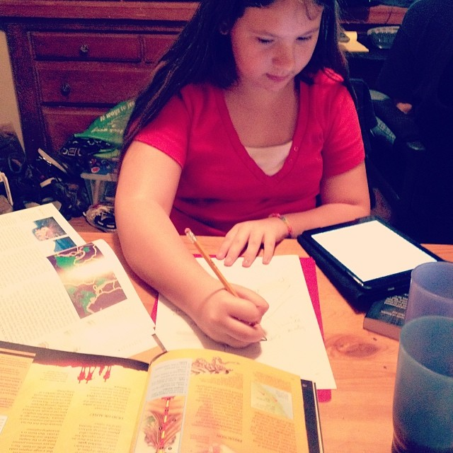 Studying volcanoes. -Beckie #homeschool #science