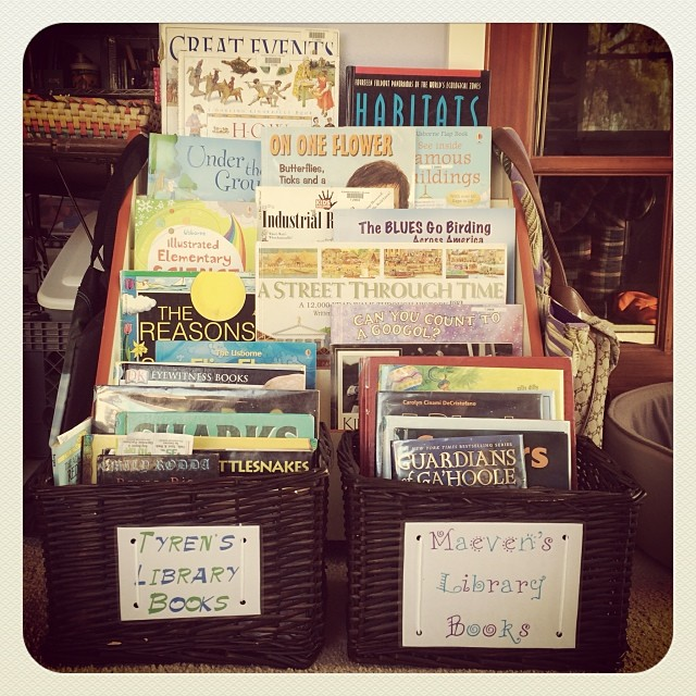 New library books baskets for the kids. #homeschool #library #books #kids