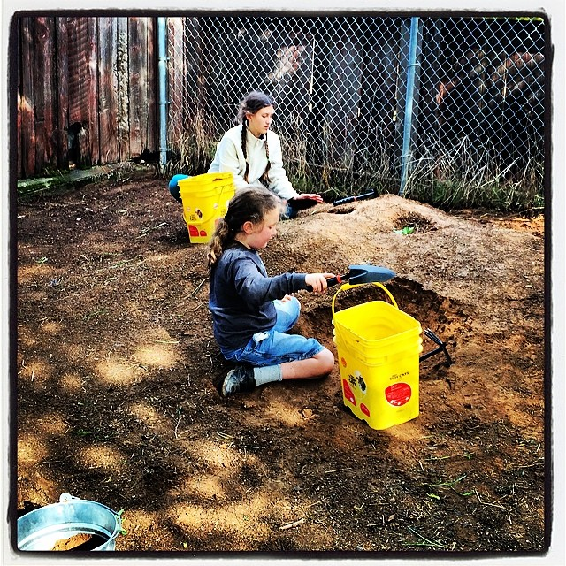 New dirt dig=happy kids. #homeschoolscience